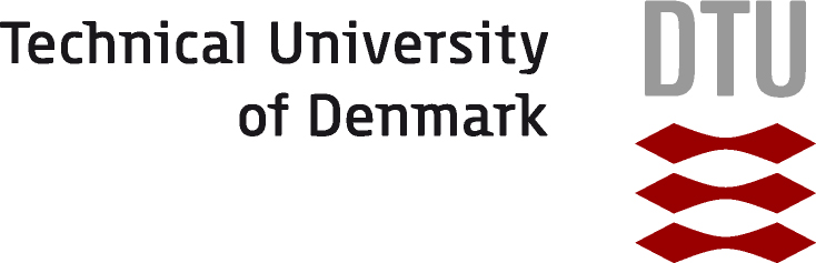 technical-university-of-denmark-department-of-management-engineering